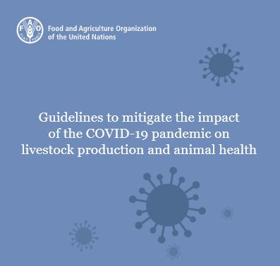 Guidelines to mitigate the impact of the COVID-19 pandemic on livestock production and animal health