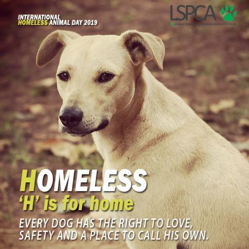Homeless poster2