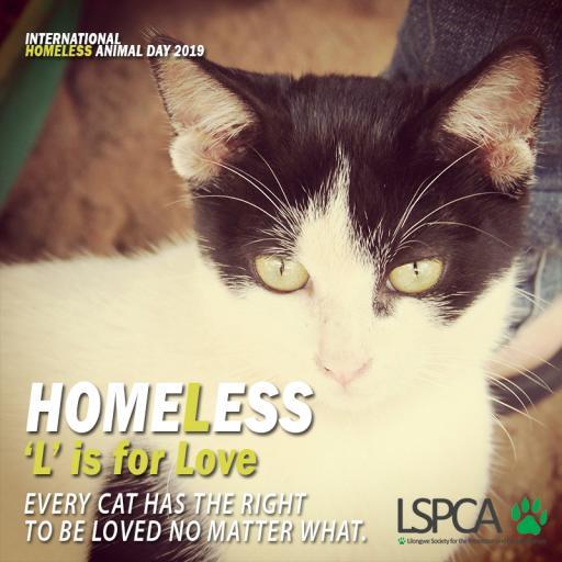 Homeless poster3