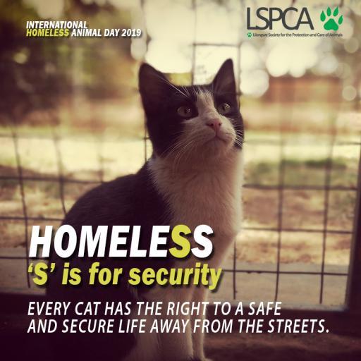Homeless poster5