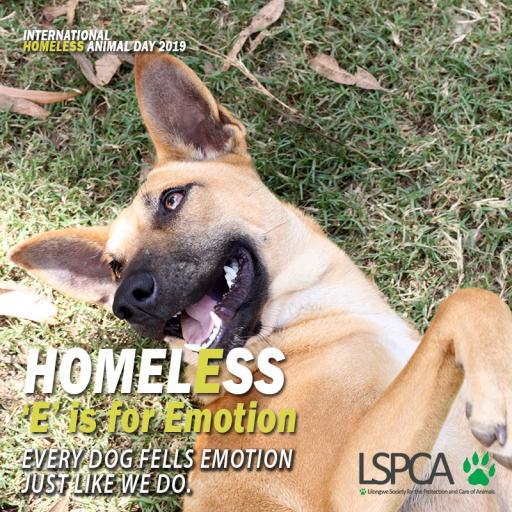 Homeless poster1