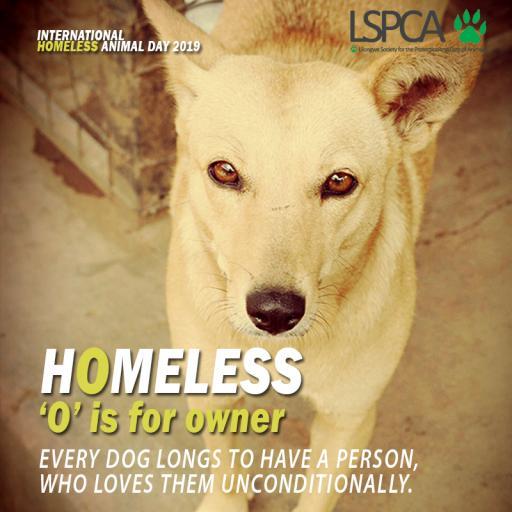 Homeless poster4